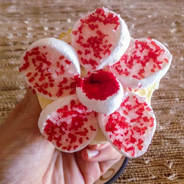 FlowerCupcakes-1-8a
