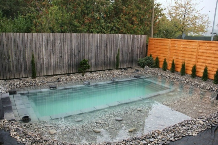 Pool designed and built to look like a pond