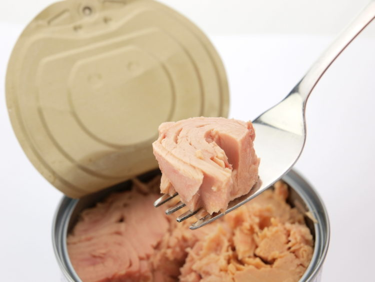 Image of canned tuna