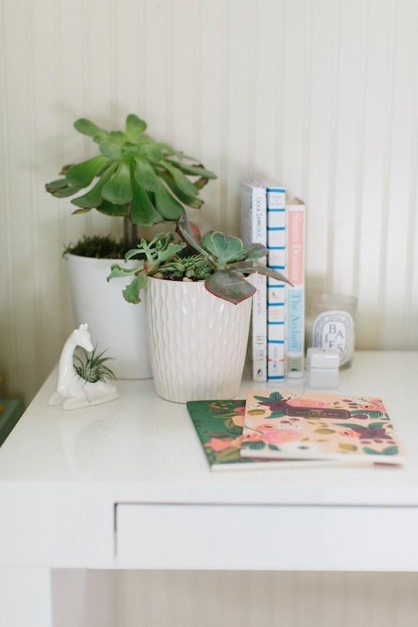 cubicle_plants