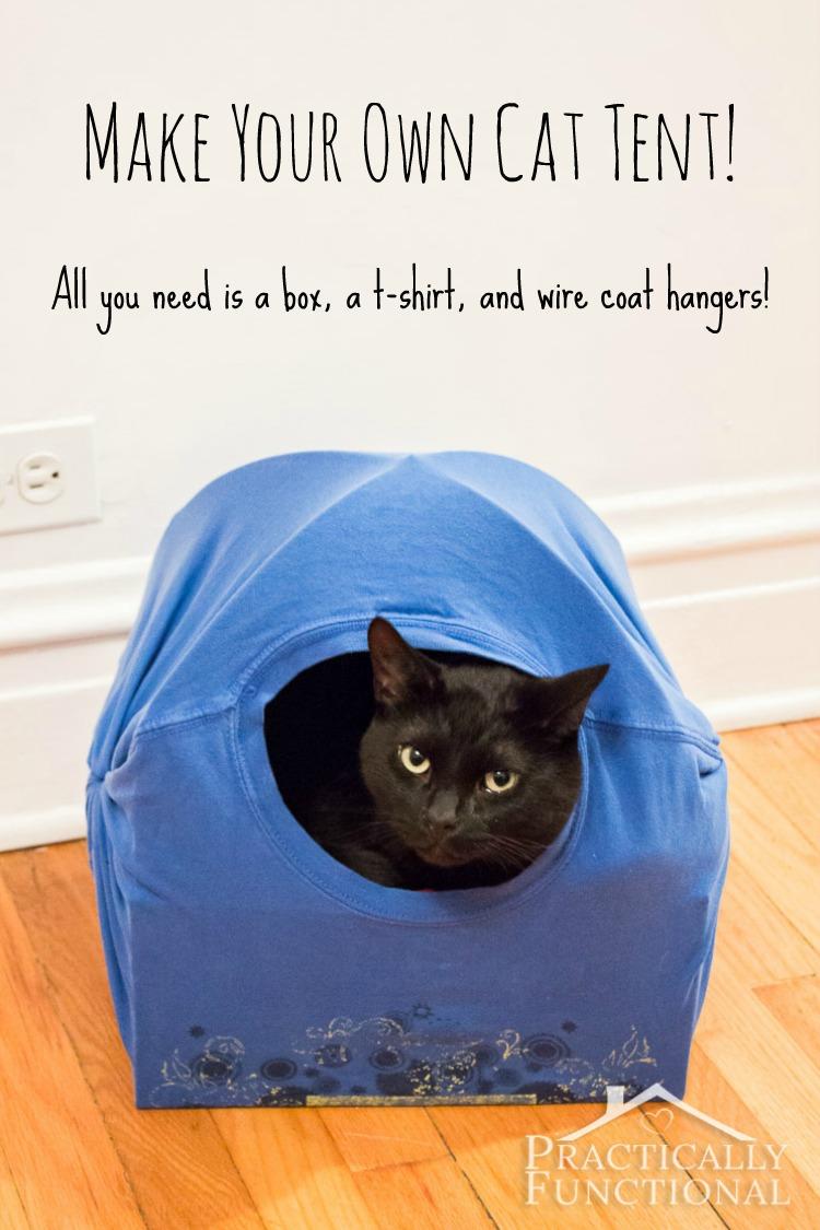 cat_tent2