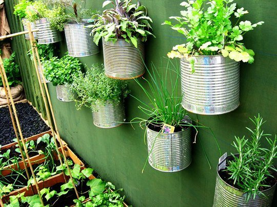 Tin Planter