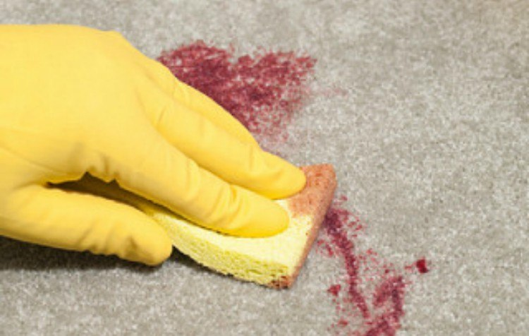 person wearing gloves cleaning carpet stain