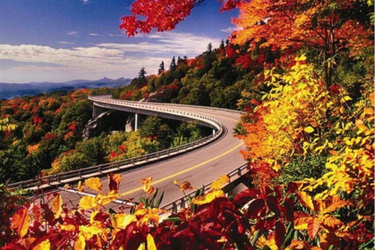 BlueRidgeParkway fall