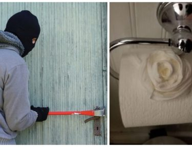 Split image of robber and toilet rose