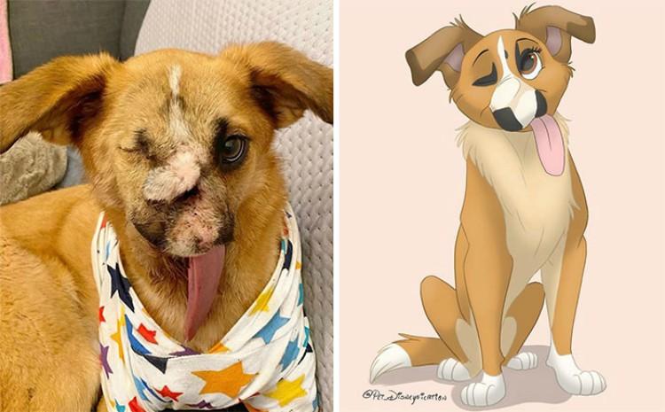 pet disneyfication
