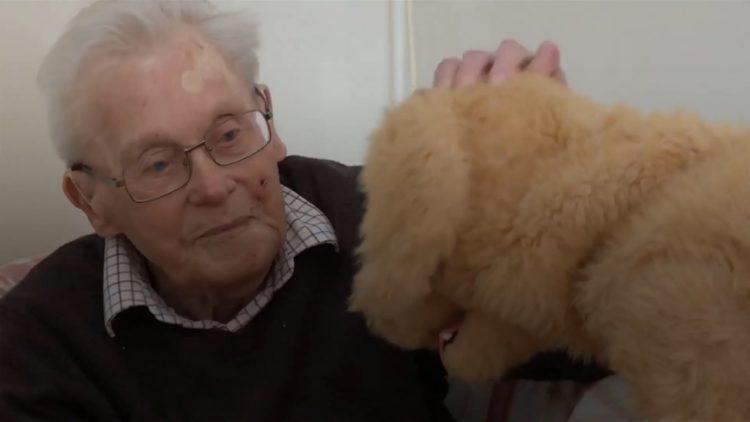Image of robotic dog and elderly man