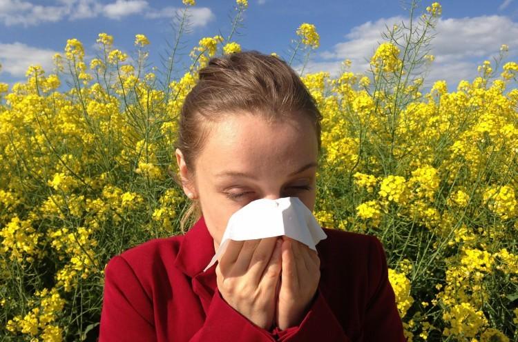 lefty allergies