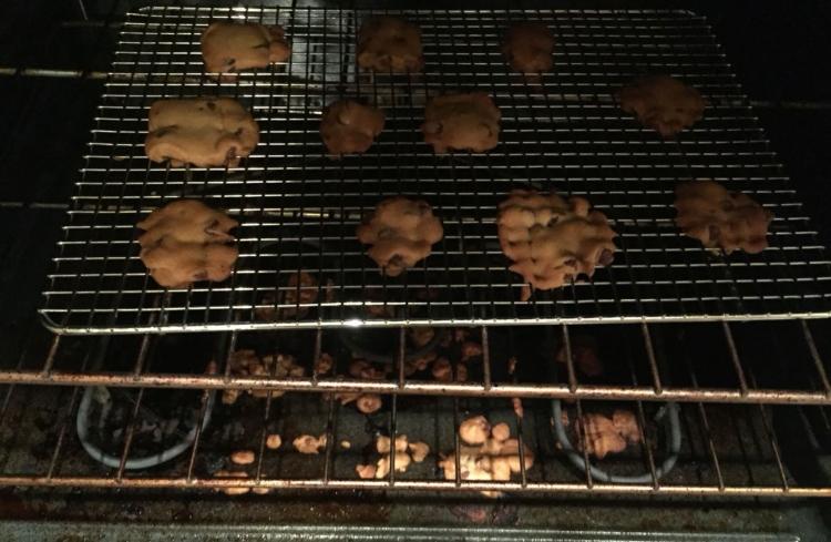 husband cookie fail