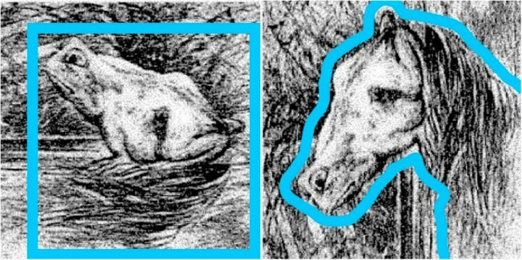 Image of hidden animals in drawing.