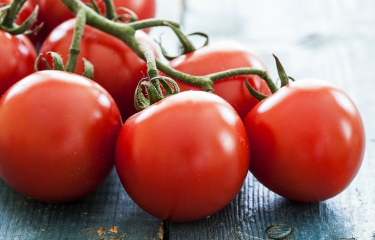 TomatoesonVine