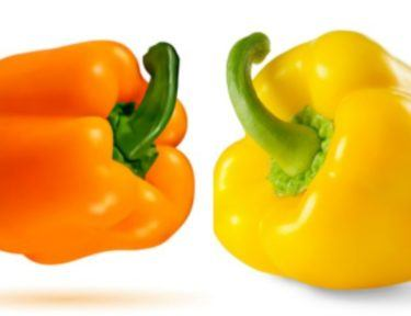 orange and yellow pepper on white background