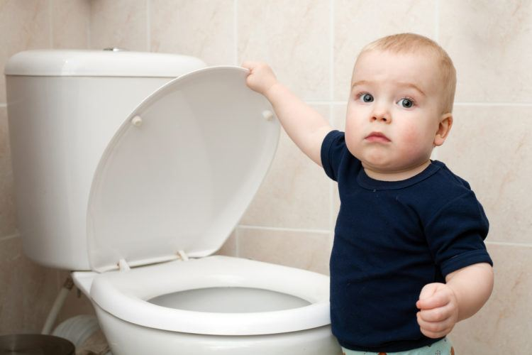 Little boy closes a toilet lid.