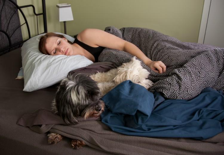 Image of woman sleeping with dog
