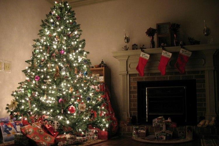 Image of lit Christmas tree.