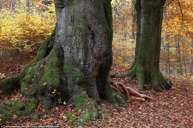 Woman hiding in tree.