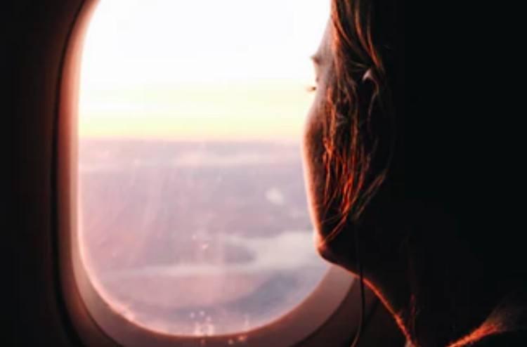 flight attendant disposition