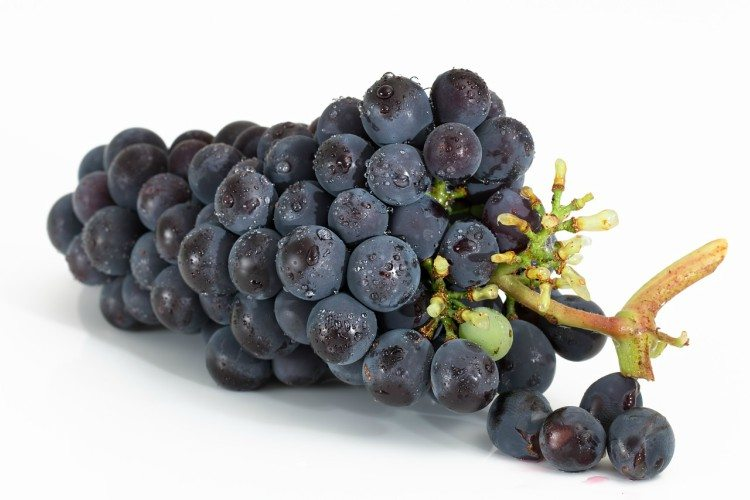 Image of black grapes.