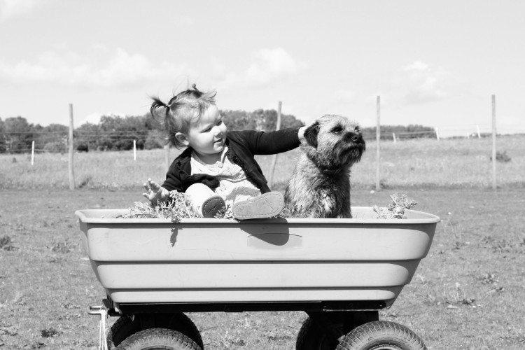 Victorian baby photo 3