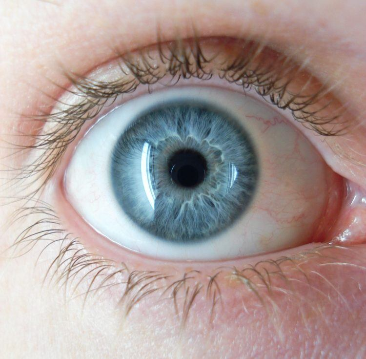 Close up of a blue eye.