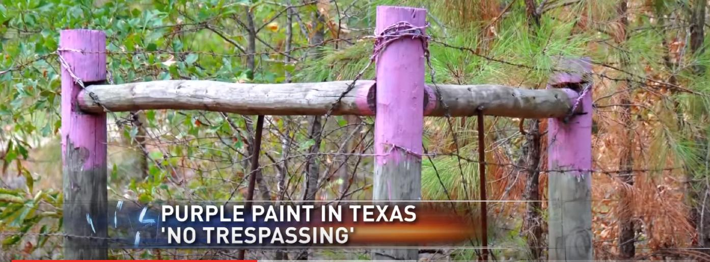 An example of the Purple Paint Law