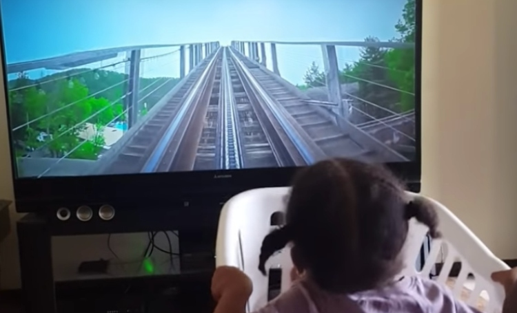 girl rollercoaster basket