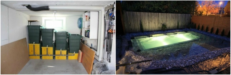 Garage filtration and UV light to kill algae