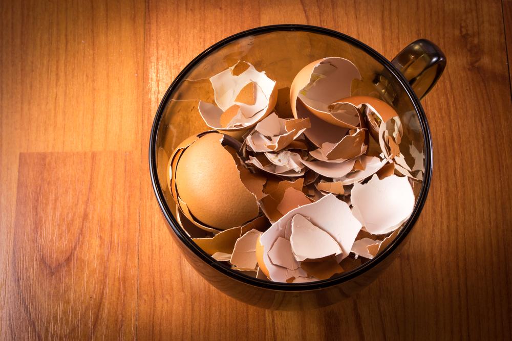 Cup Full of Broken Egg Shells
