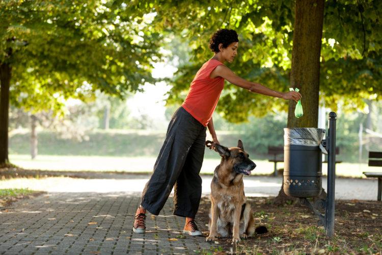 Image of Woman is throwing away her dog's poop