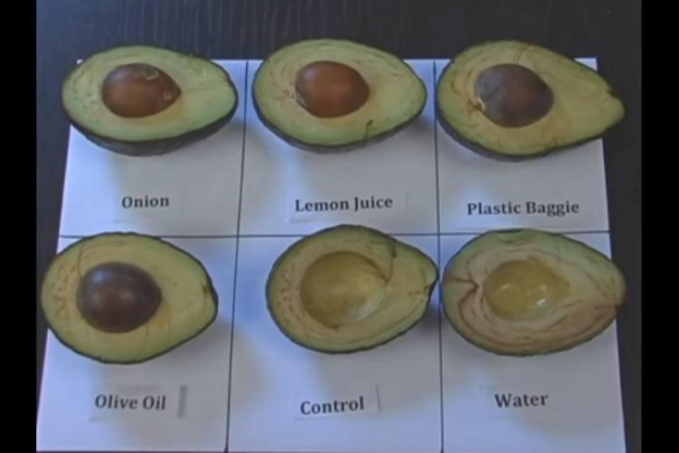 AvocadoBrowningChartFruitList