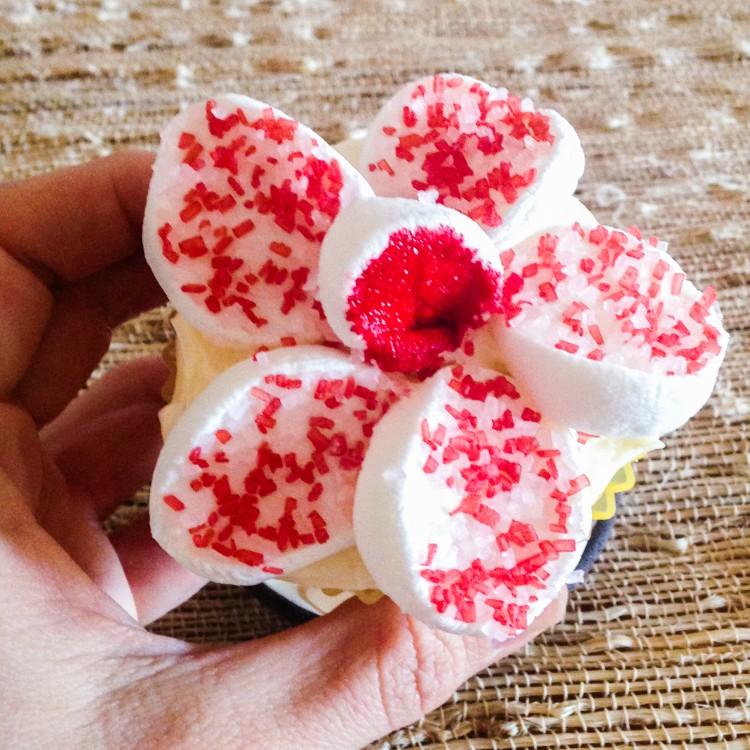 FlowerCupcakes-1-10a