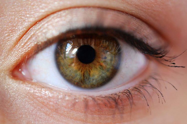 Close up of a hazel eye.
