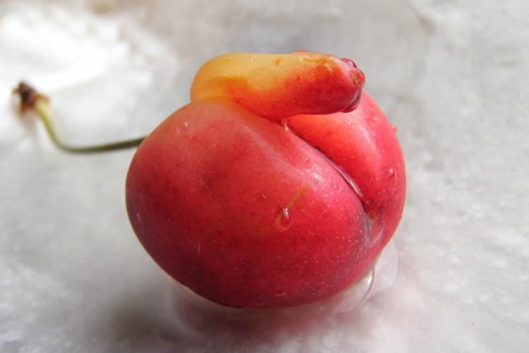 cherry malformed