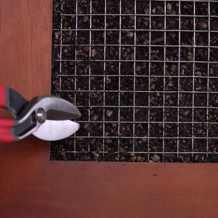 Succulent Wall Garden tin snips