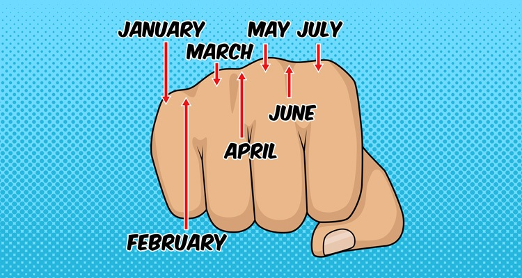ou can figure out the number of days in each month by looking at your knuckles