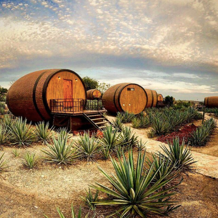 Image of tequila barrel hotel