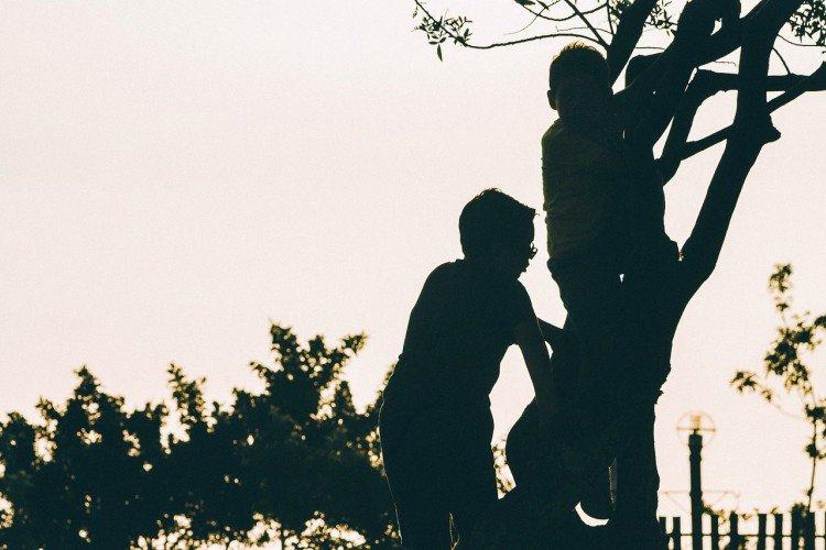 Image of boys climbing tree.