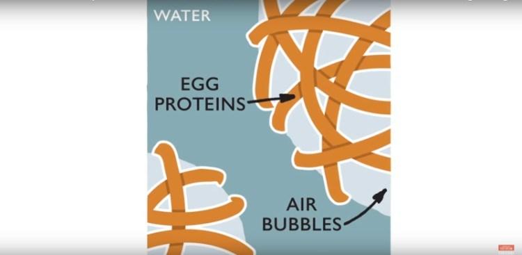 Graphic explain how beating works on egg whites