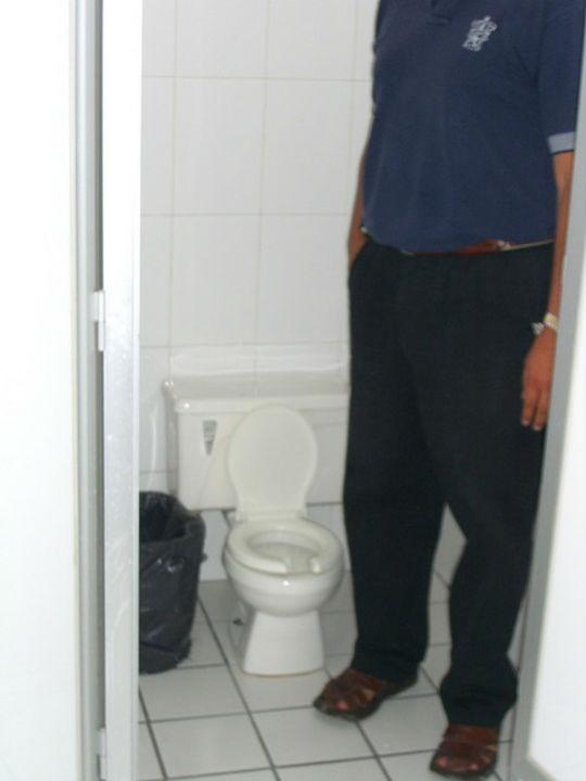 tiny-toilet