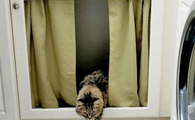 curtain rod litter box