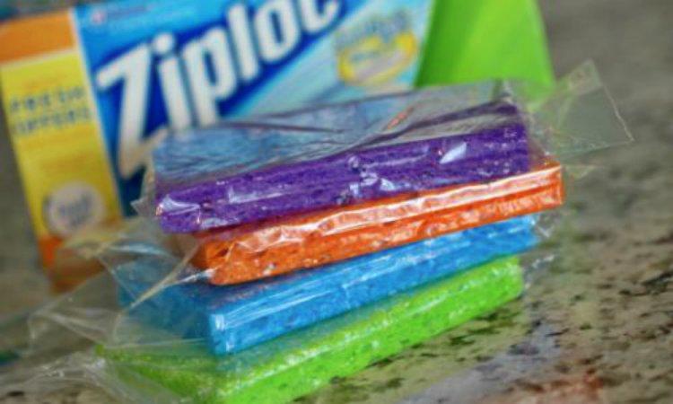 IcePackSponges