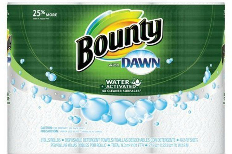 cleaning bounty