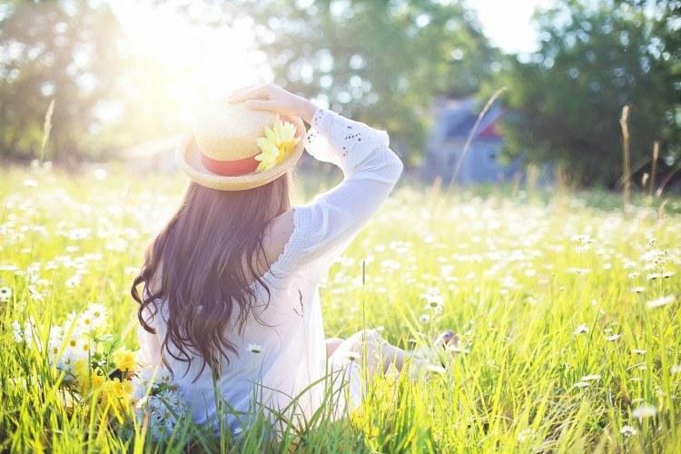 sunshine field