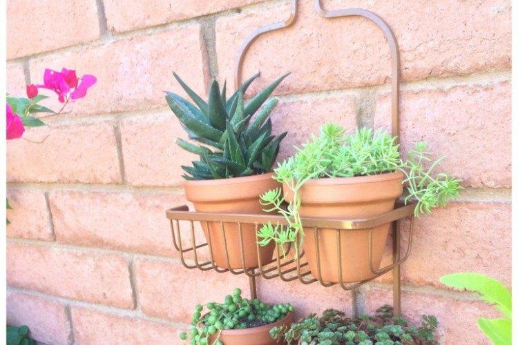 caddy planter