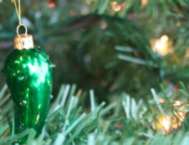 Christmas pickle hanging in tree