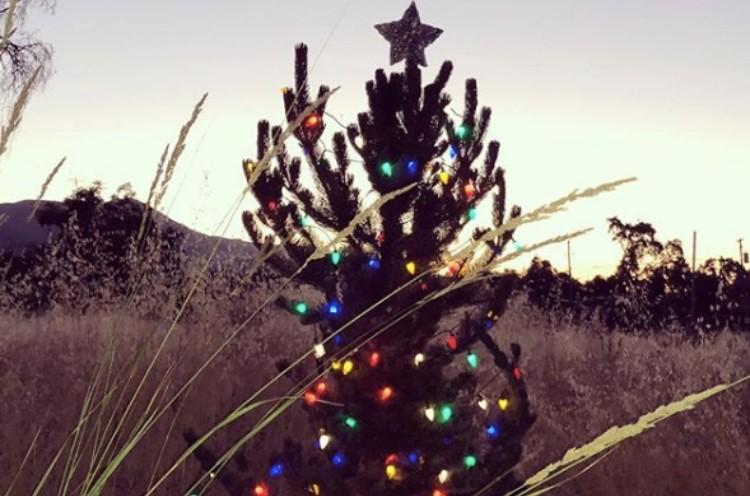 Kate Spade memorial Christmas tree