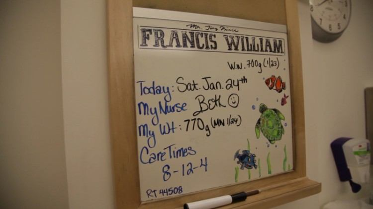 Whiteboard in NICU with a Finding Nemo theme.