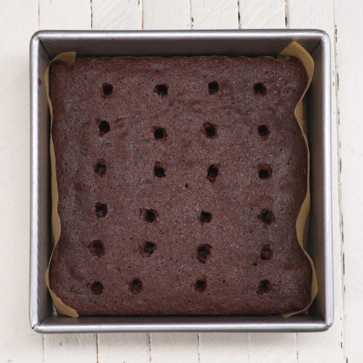 Poke Turtle Brownies Pan