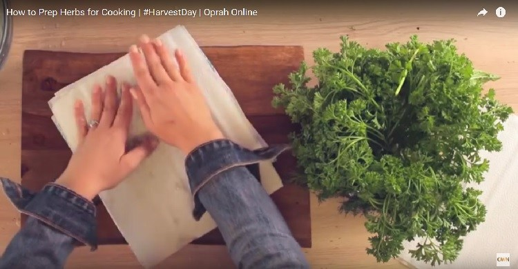 Patting fresh herbs dry with paper towel.