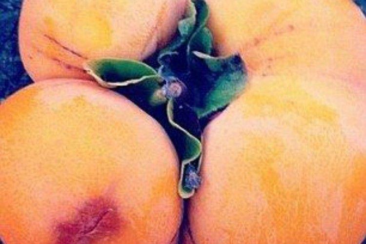 mutant oranges